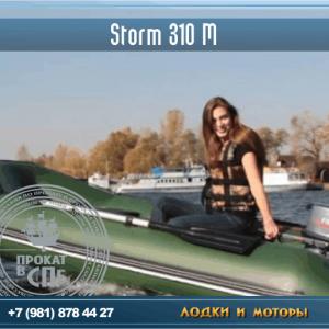 Storm-310M